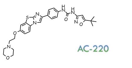 O=C(NC1=CC=C(C2=CN3C(SC4=CC(OCCN5CCOCC5)=CC=C34)=N2)C=C1)NC6=NOC(C(C)(C)C)=C6
